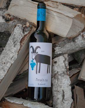 biodynamisk rødvin odense